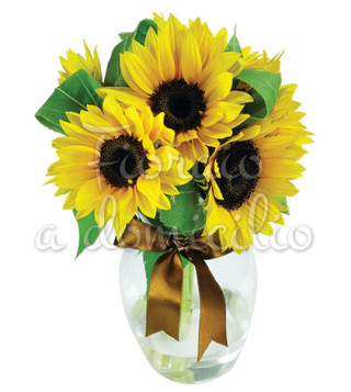 Fiori a domicilio: bouquet di tre girasoli
