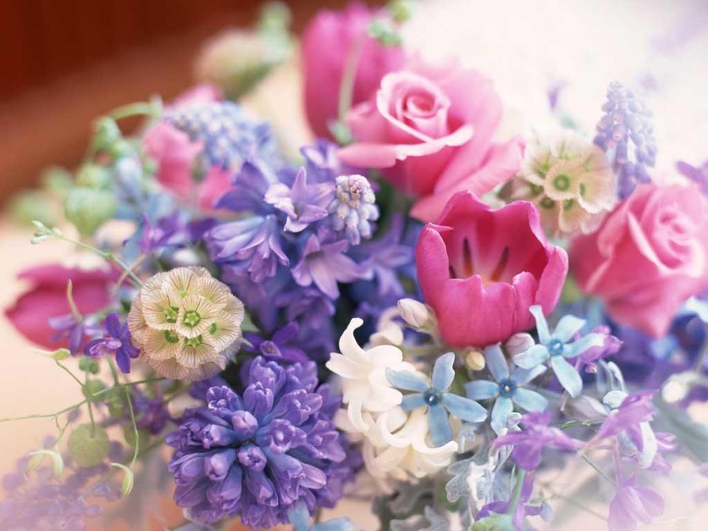 spesso Fiori per compleanno: Spedizione fiori per compleanno ZQ34