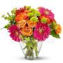 bouquet-gerbere
