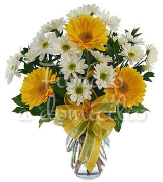 bouquet-gerbere-gialle