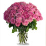 buoquet-di-36-rose-rosa