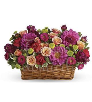 cesto-di-fiori-misti-colorati