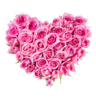 cuore-di-rose-rosa