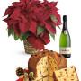 Fiori a domicilio |Stella di Natale con Panettone e Spumante