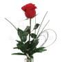 Fiori a domicilio: rose rosse numero preciso
