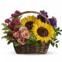 Fiori a domicilio: cesto di girasoli e rose rosa