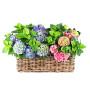 Fiori a domicilio: cesto di piante di ortensie
