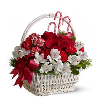 Fiori a domicilio | Cesto natalizio con rose e alstroemeria