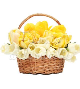 cesto-di-tulipani